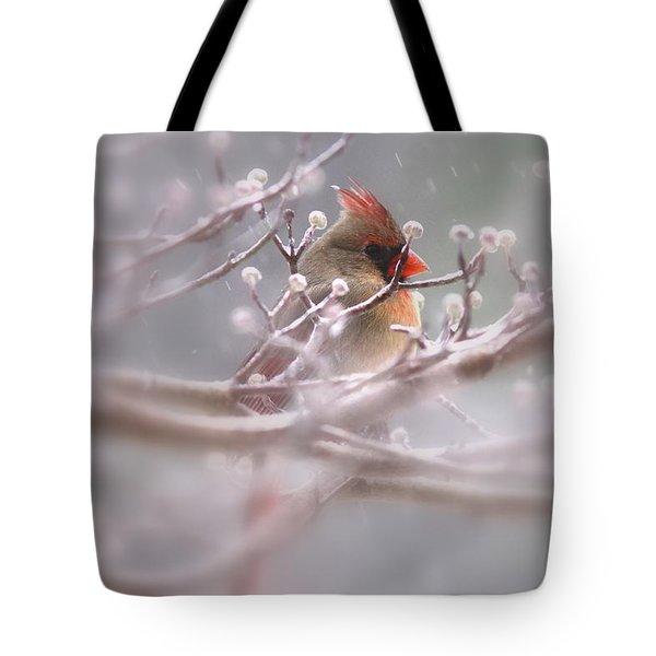 Cardinal - Bird - Lady In The Rain Tote Bag by Travis Truelove