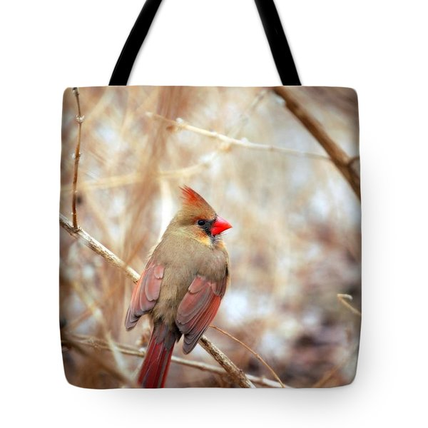 Cardinal Birds Female Tote Bag