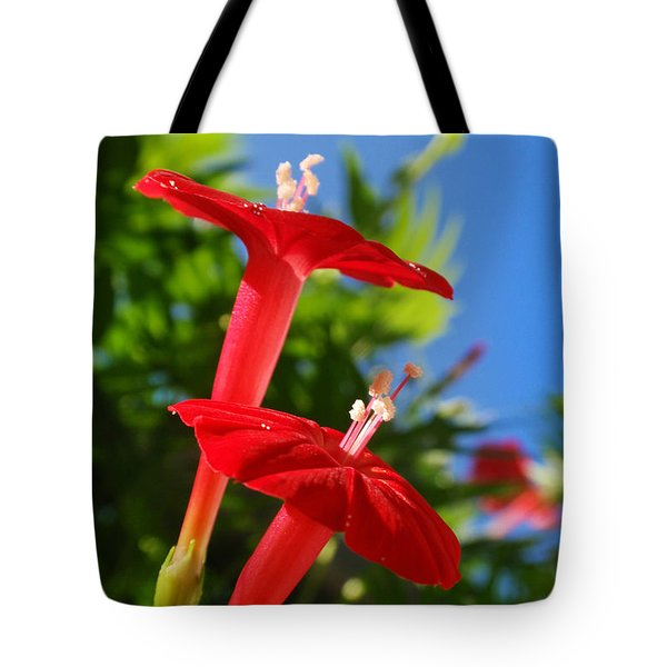 Cardinal Climber Flowers Tote Bag by Christina Rollo