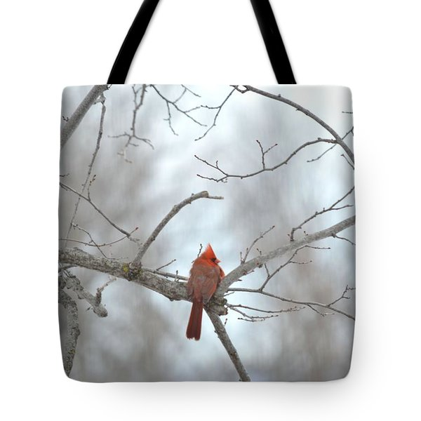 Tote Bag featuring the photograph Cardinal Delight by Dacia Doroff