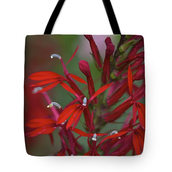 Cardinal Flower Tote Bag by Jane Eleanor Nicholas