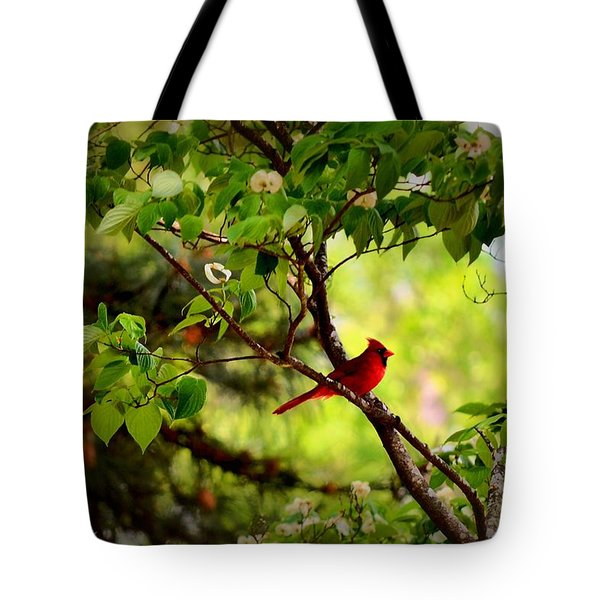 Cardinal In Dogwood Tote Bag by Tara Potts