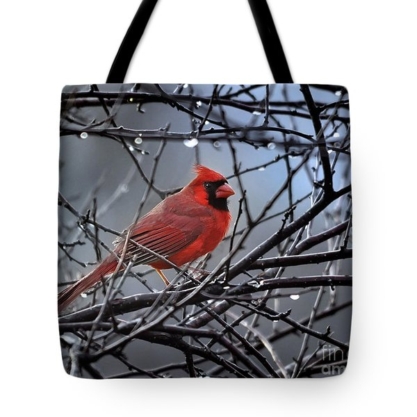 Cardinal In The Rain   Tote Bag