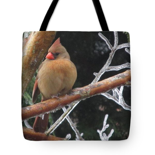 Tote Bag featuring the photograph Cardinal by Marilyn Zalatan