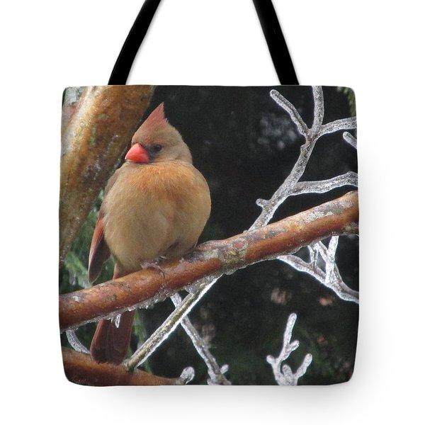 Cardinal Tote Bag by Marilyn Zalatan