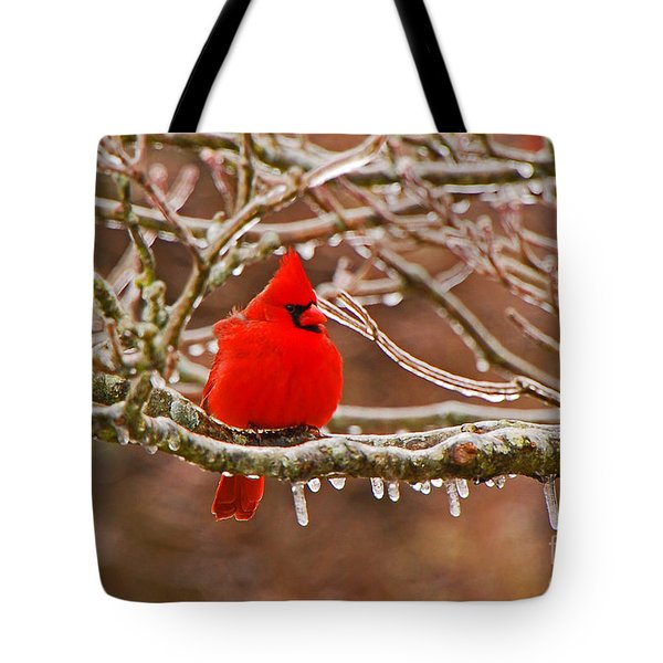 Cardinal Tote Bag by Mary Carol Story