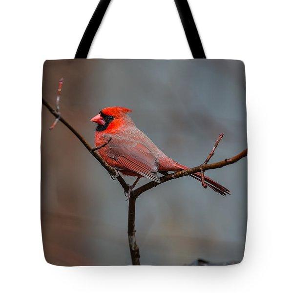 Cardinal Sing Tote Bag