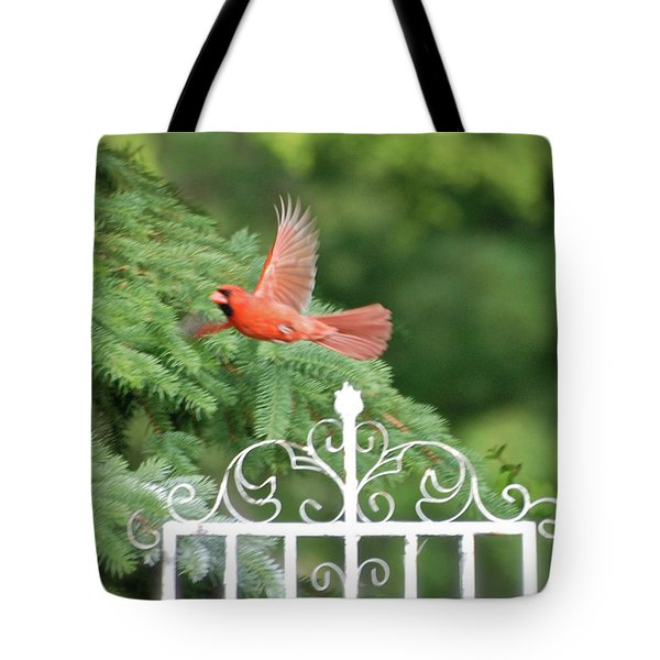 Tote Bag featuring the photograph Cardinal Time To Soar by Thomas Woolworth