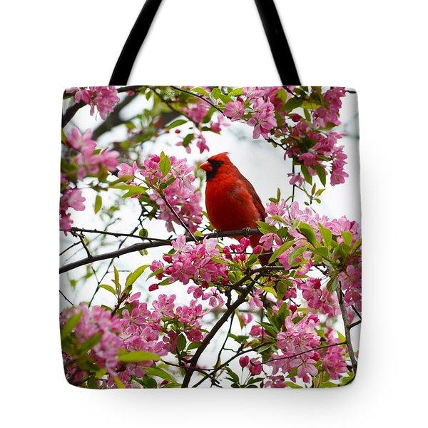 Cardinally Beautiful Tote Bag