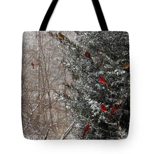Cardinals In Winter 1 Square Tote Bag