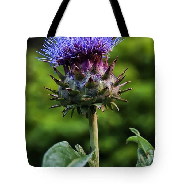 Cardoon Tote Bag by Chris Flees