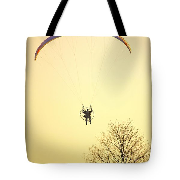 Careful Of That Tree Tote Bag by Karol Livote