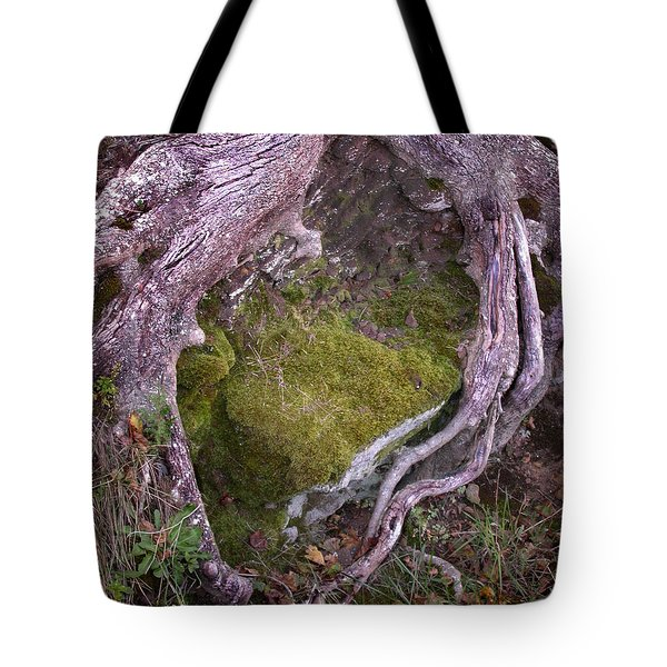 Tote Bag featuring the photograph Caressing The Moss by Gary Slawsky