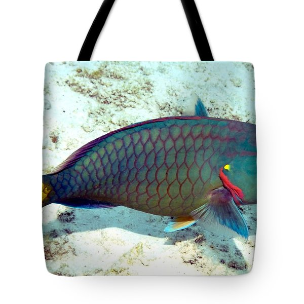 Tote Bag featuring the photograph Caribbean Stoplight Parrot Fish In Rainbow Colors by Amy McDaniel