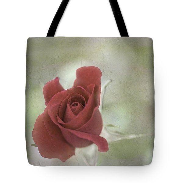 Tote Bag featuring the photograph Carmen by Elaine Teague