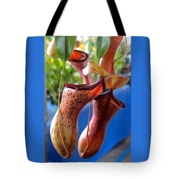 Carnivorous Pitcher Plants Tote Bag