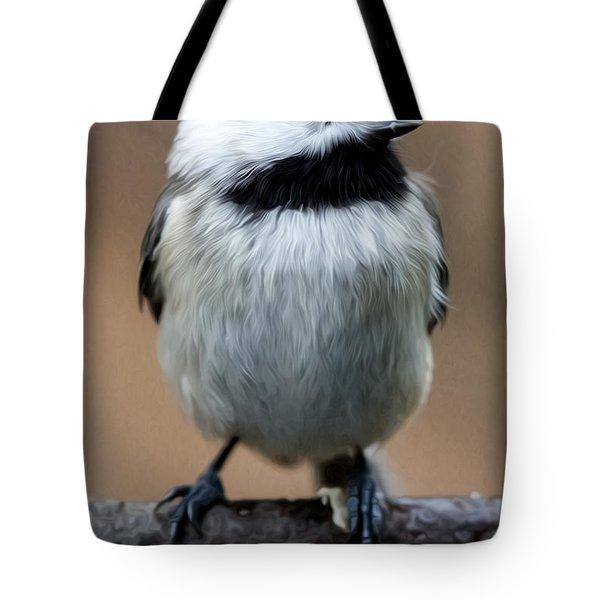 Carolina Chickadee Tote Bag by John Haldane