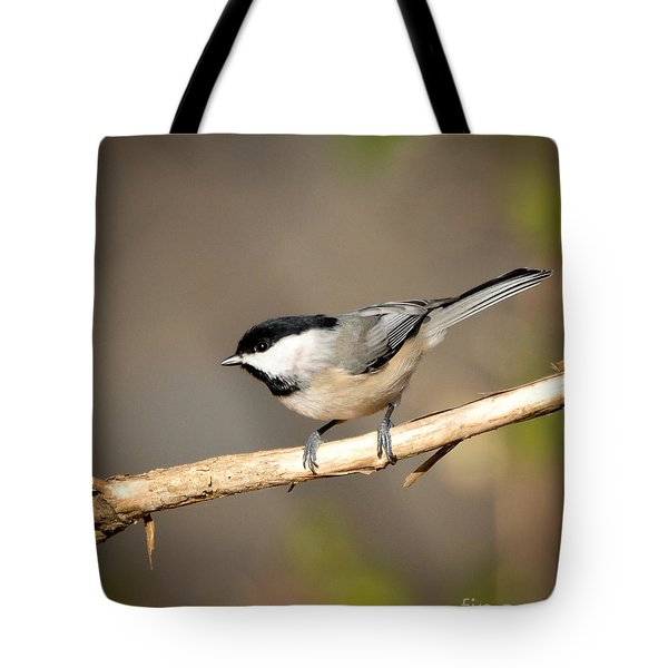 Carolina Chickadee  Tote Bag by Kerri Farley