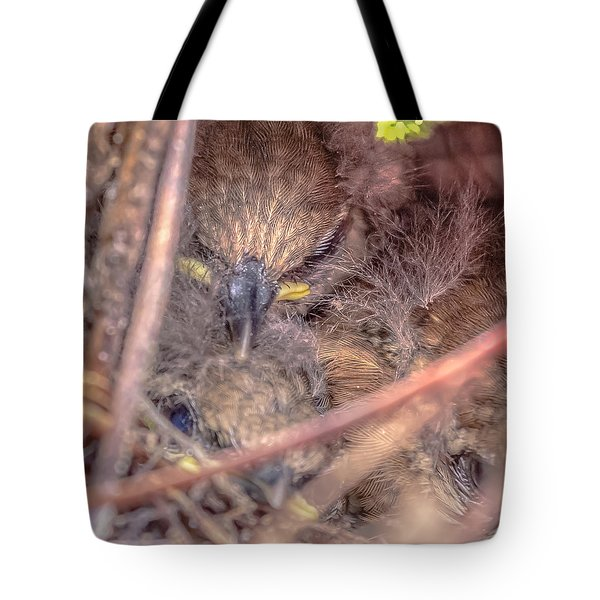 Tote Bag featuring the photograph Carolina Wren Nest by Rob Sellers