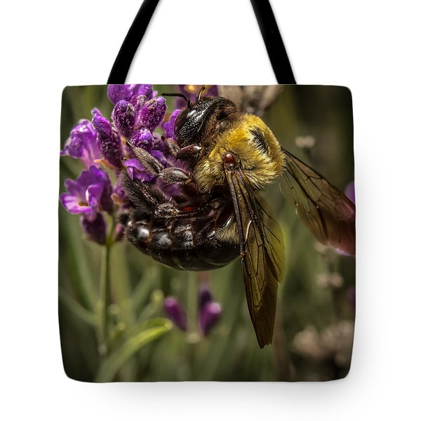 Carpenter Bee On A Lavender Spike Tote Bag by Ron Pate