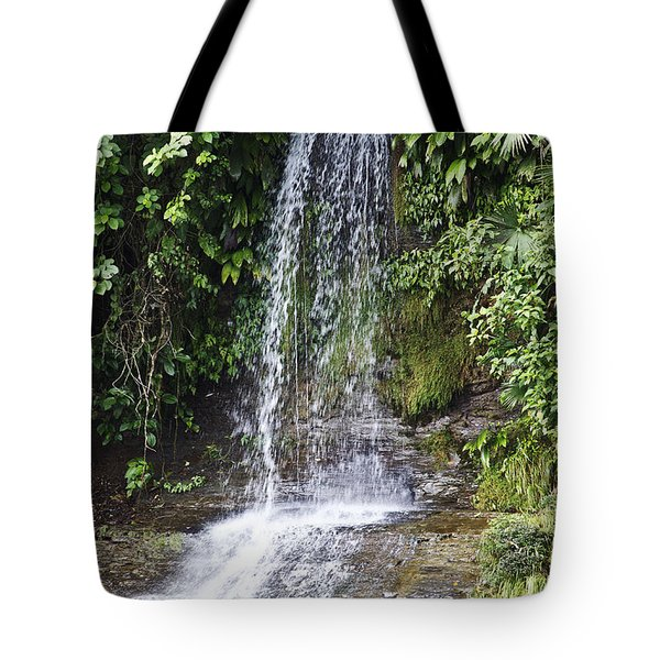 Cascada Pequena Tote Bag by Kathy McClure