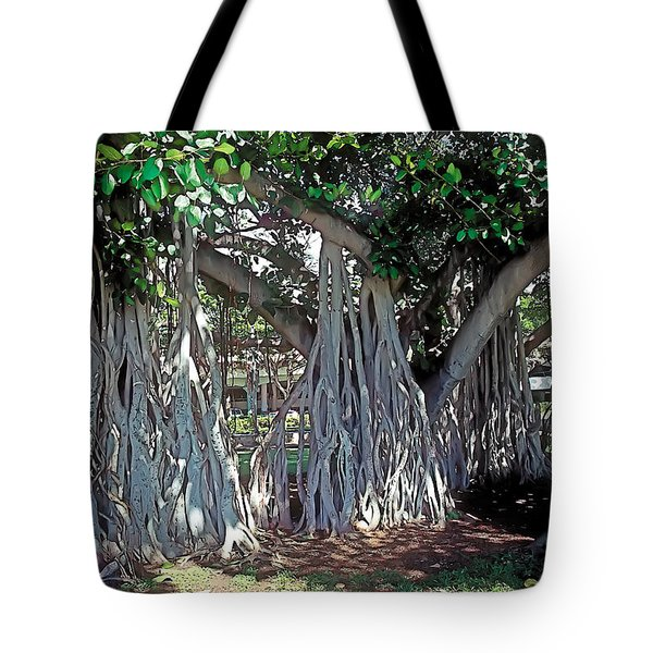 Cascade Tote Bag by Terry Reynoldson