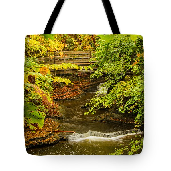 Cascadilla Gorge Cornell University Tote Bag