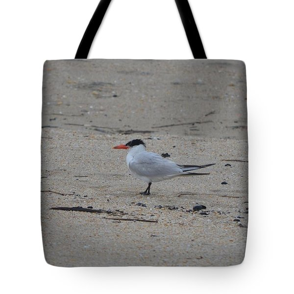 Tote Bag featuring the photograph Caspian Tern by James Petersen