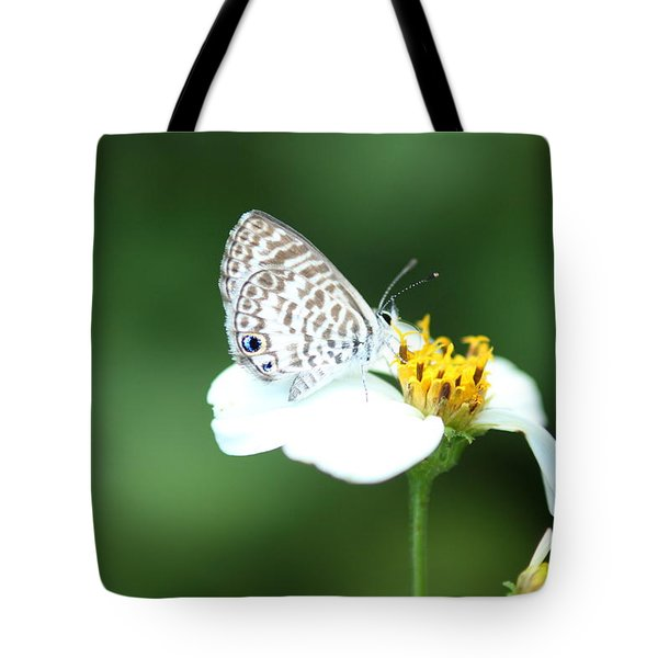 Tote Bag featuring the photograph Cassius Blue On Wildflower by Greg Allore