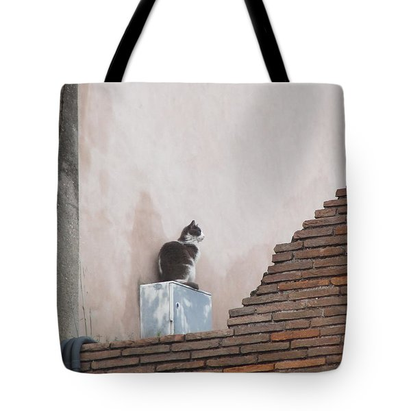 Tote Bag featuring the photograph Cat Above The Roman Ruins by Tiffany Erdman