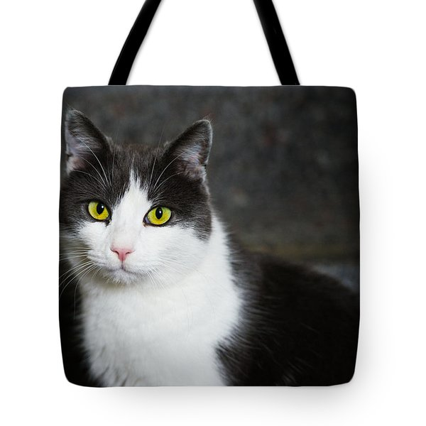 Cat Black And White With Green And Yellow Eyes Tote Bag by Matthias Hauser