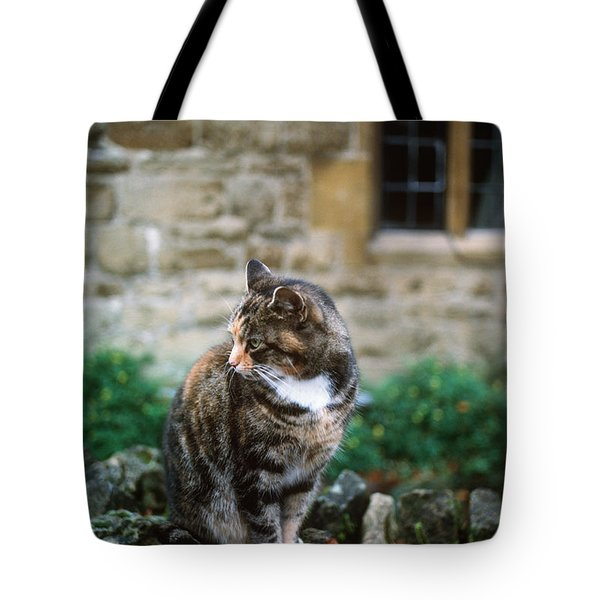 Cat In England Tote Bag by James L. Amos