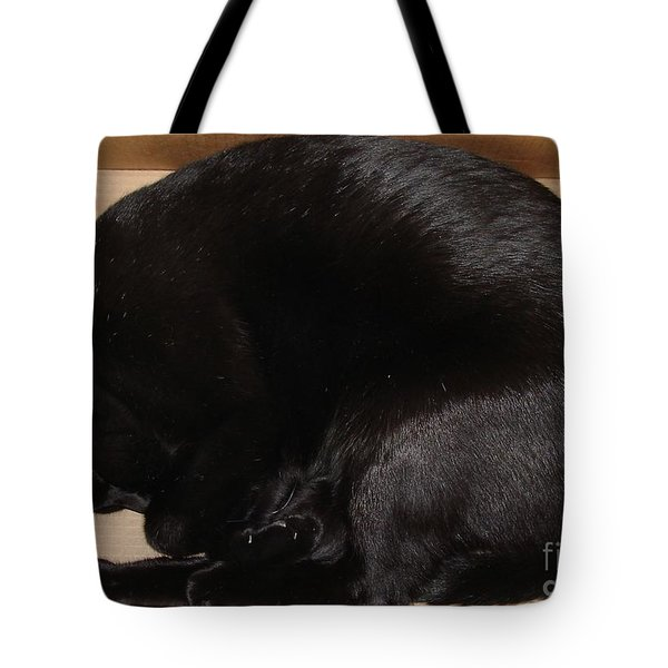 Tote Bag featuring the photograph Cat In The Box by Kerri Mortenson