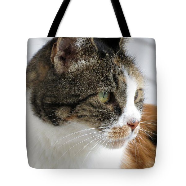 Tote Bag featuring the photograph Cat by Laurel Powell