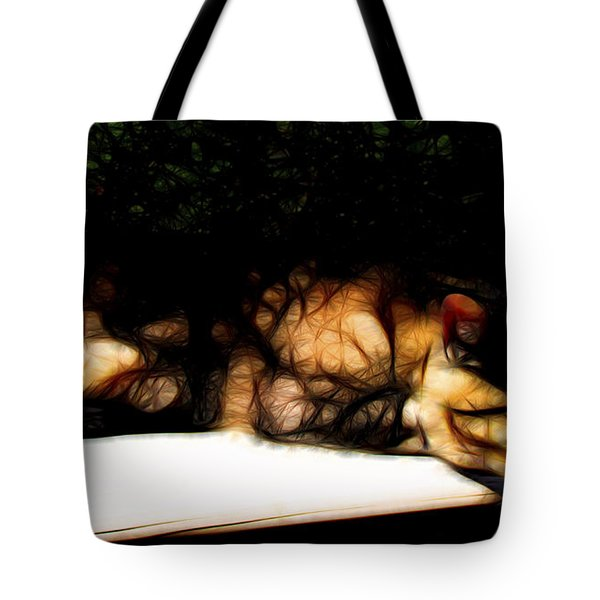 Cat Nap 1 Tote Bag