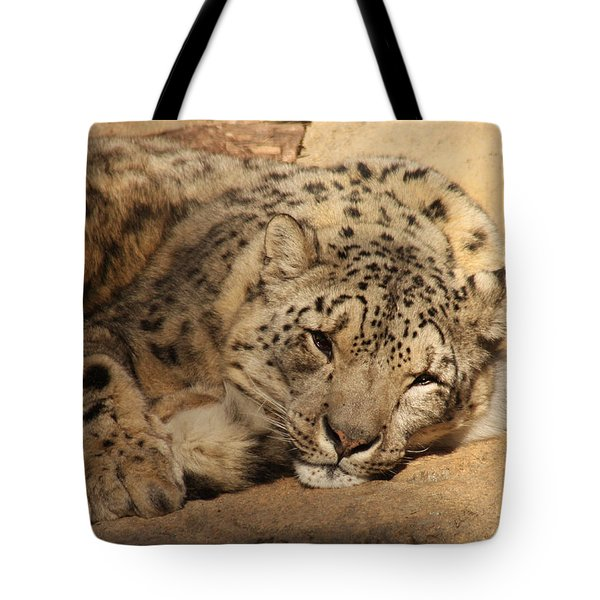 Tote Bag featuring the photograph Cat Nap by Bob and Jan Shriner