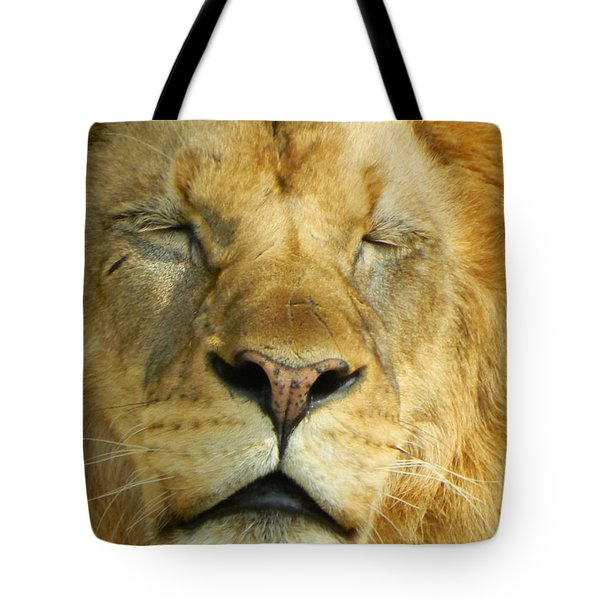 Cat Nap Tote Bag by Emmy Marie Vickers