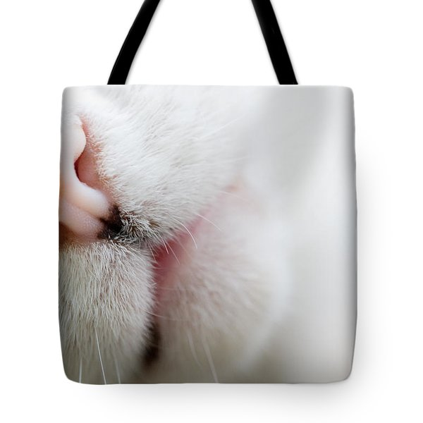 Cat Nose Tote Bag by Melinda Fawver