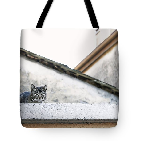 Tote Bag featuring the photograph Cat On A Roof by Brooke T Ryan