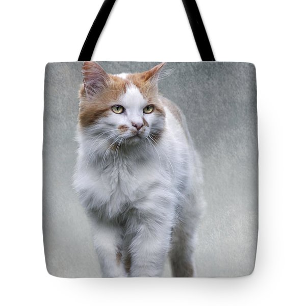 Cat On Texture - 01 Tote Bag
