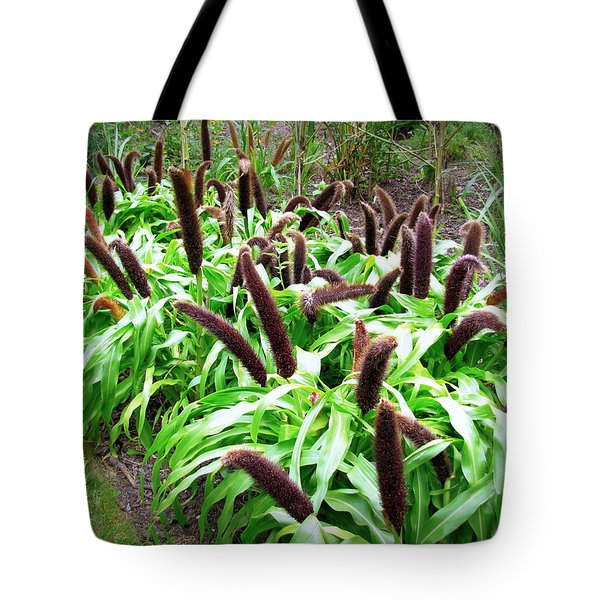 Cat Tail Plants Tote Bag