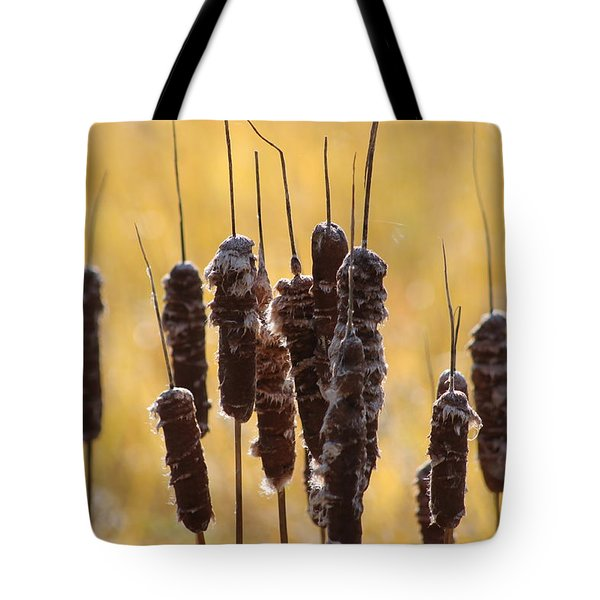 Cat Tails In November Tote Bag by Bruce Patrick Smith