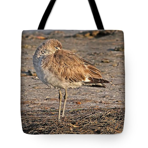Catching Some Zzzzzs Tote Bag by HH Photography of Florida