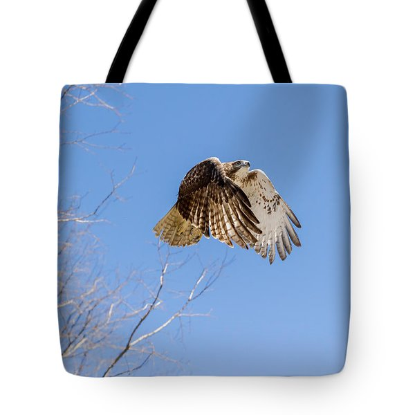 Catching The Sun Tote Bag by Bill Wakeley