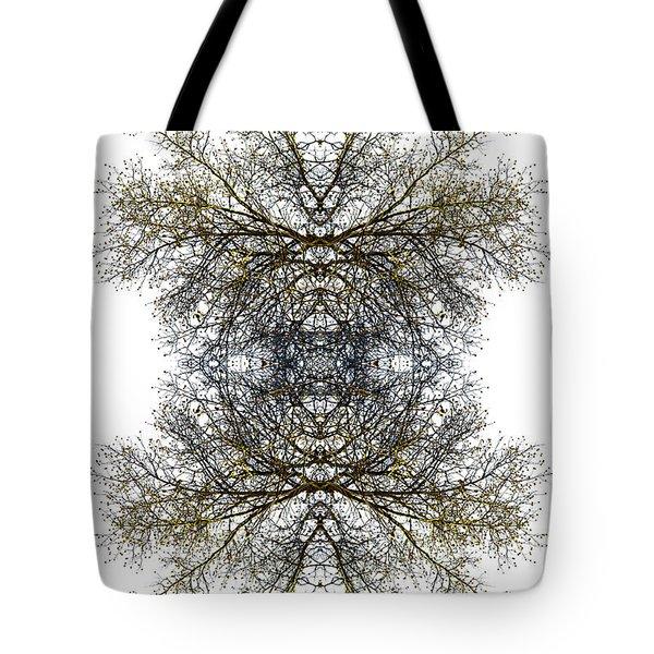 Cathedral Glass Tote Bag by Debra and Dave Vanderlaan
