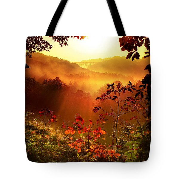 Cathedral Of Light Tote Bag