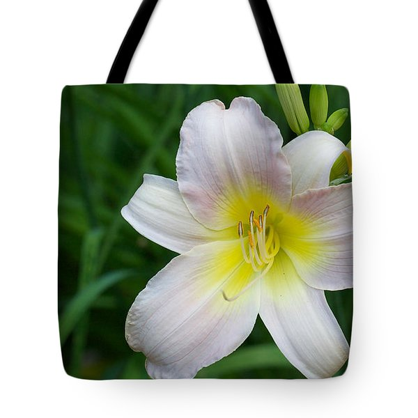 Tote Bag featuring the photograph Catherine Woodbury Daylily - Hemerocalle Catherine Woodbury by Nature and Wildlife Photography