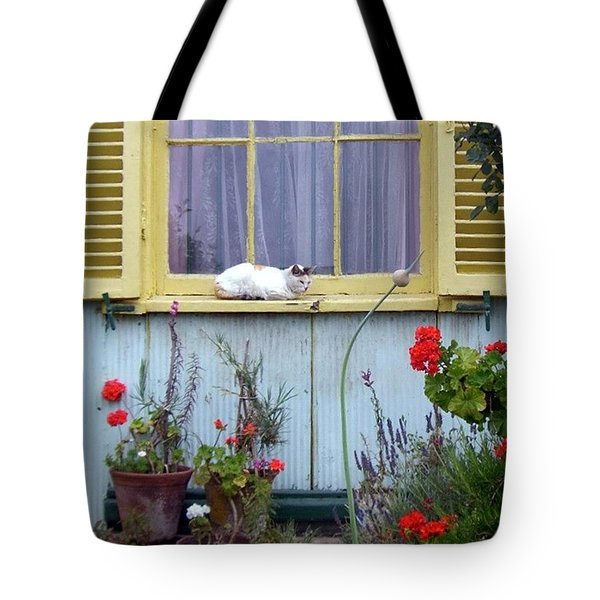 Catnap Tote Bag by Barbie Corbett-Newmin