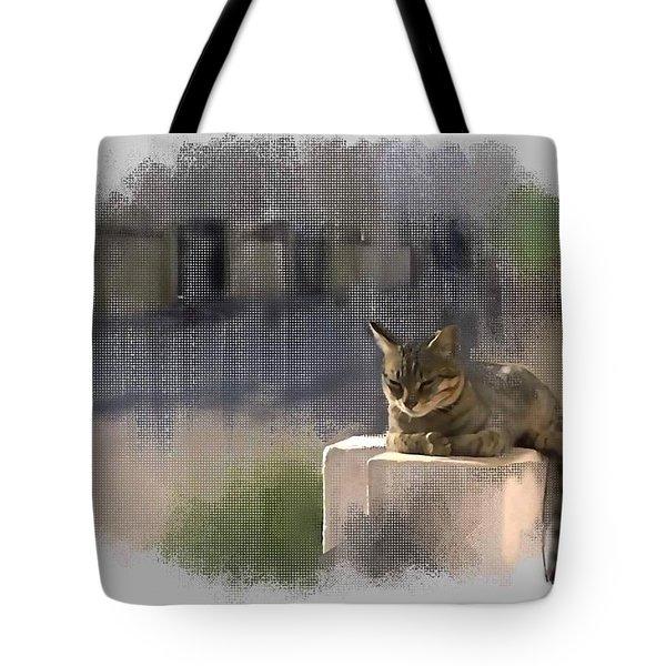 Catnap Tote Bag by Usha Shantharam