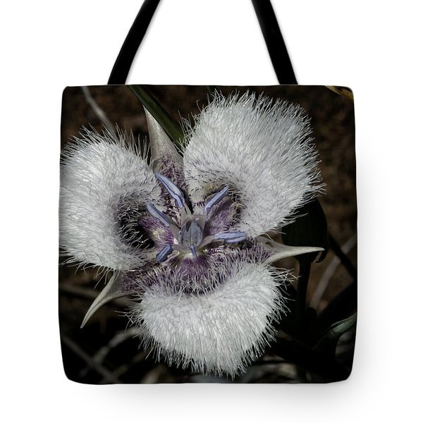 Cats Ears Tote Bag by Betty Depee